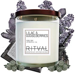 Lilac And Gooseberries Candle