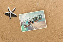 Neptune California Postcard Sticker