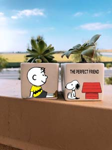 Charlie And Snoopy Best Friends Succulent Planters