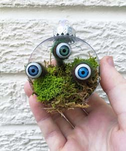 Eye Lichen Ball Ornament