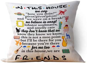 Funny Friends Tv Show Quotes Throw Pillow
