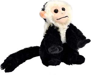 Marcel Friends Monkey Plush