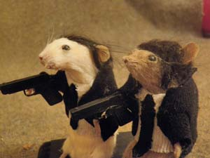 Tiny Vincent And Tiny Jules Taxidermy Pulp Rodents