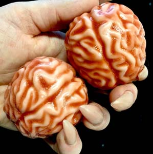 Brains Soap 2 Pack